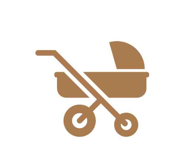Baby Stroller Services